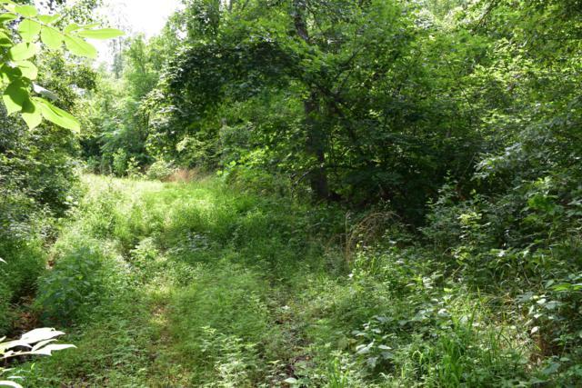 Tbd Redwood Lane, Noel, MO 64854 (MLS #60141386) :: Sue Carter Real Estate Group