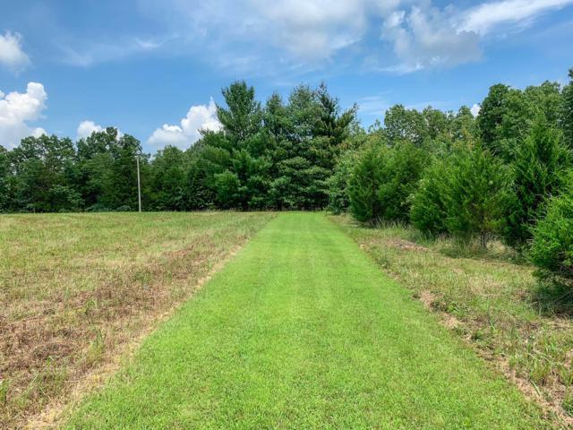 Off Reid Drive, Theodosia, MO 65761 (MLS #60141474) :: Sue Carter Real Estate Group