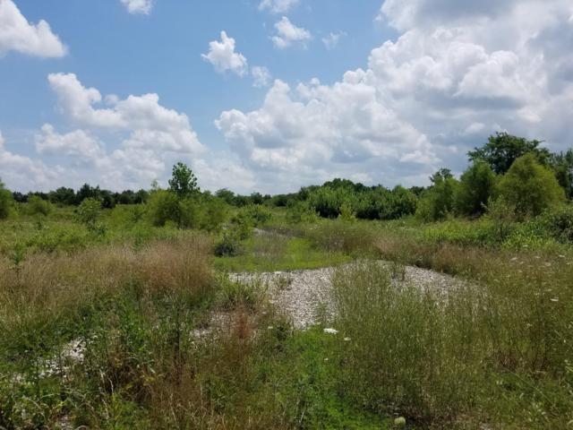 1794 S Ash Street, Buffalo, MO 65622 (MLS #60141546) :: Sue Carter Real Estate Group