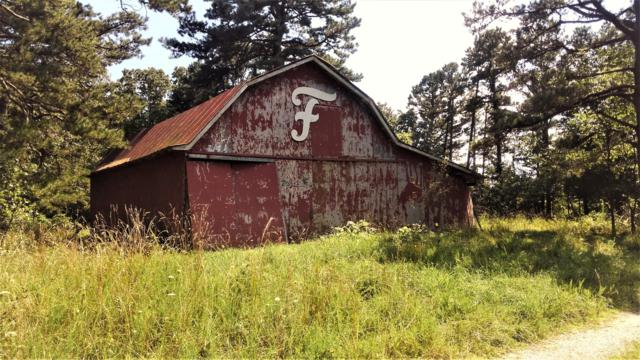 499 Ravenwood Way, Ridgedale, MO 65739 (MLS #60141579) :: Sue Carter Real Estate Group