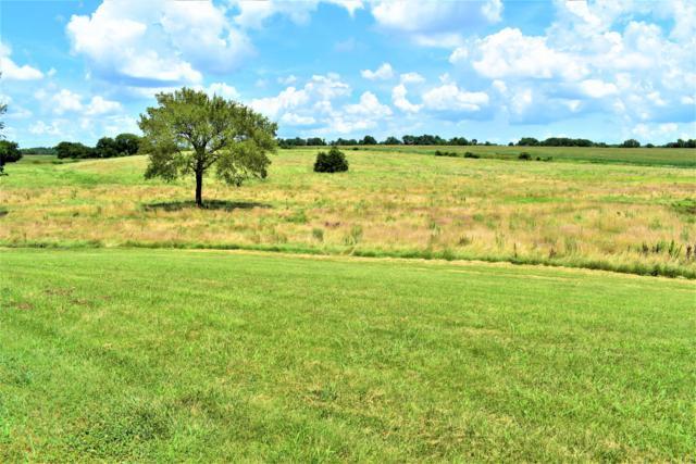Tbd Farm Road 1120, Monett, MO 65708 (MLS #60141621) :: Sue Carter Real Estate Group