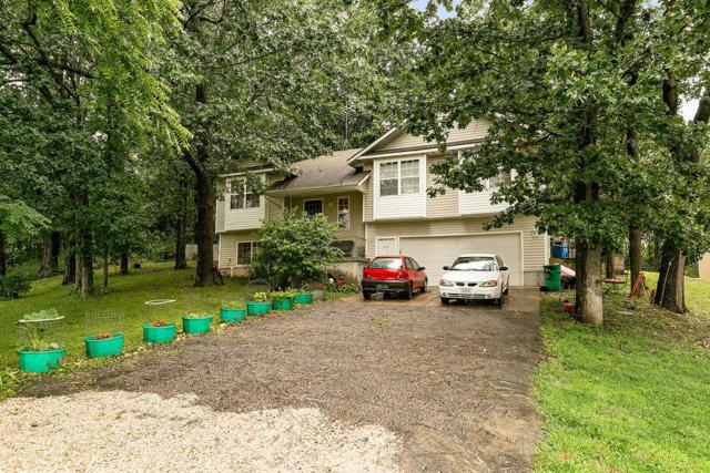 21140 Lawrence 2074, Ash Grove, MO 65604 (MLS #60141671) :: Sue Carter Real Estate Group