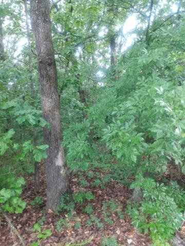 3003 Jennifer Drive, West Plains, MO 65775 (MLS #60141709) :: Sue Carter Real Estate Group