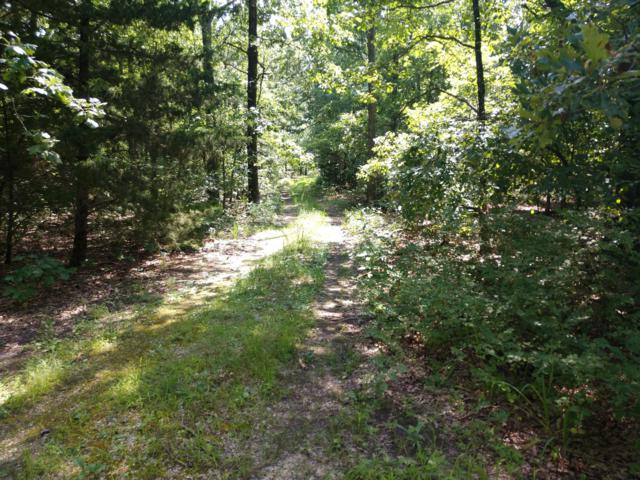 1513 (Tbd) State Road K, Windyville, MO 65783 (MLS #60141726) :: Sue Carter Real Estate Group