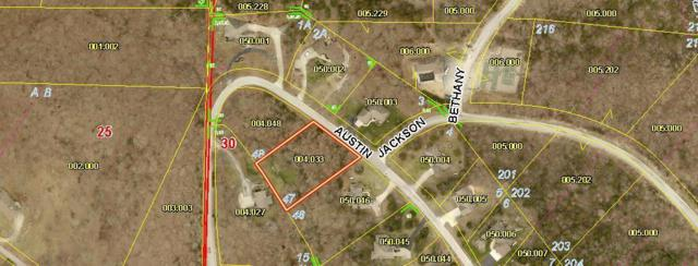 Lot 47 Austin Place, Branson West, MO 65737 (MLS #60141781) :: Sue Carter Real Estate Group
