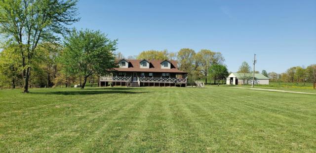 Fordland, MO 65652 :: Sue Carter Real Estate Group