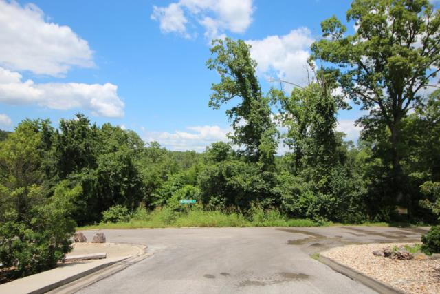 Tbd N. Rainbow Drive, Branson, MO 65616 (MLS #60141890) :: Sue Carter Real Estate Group