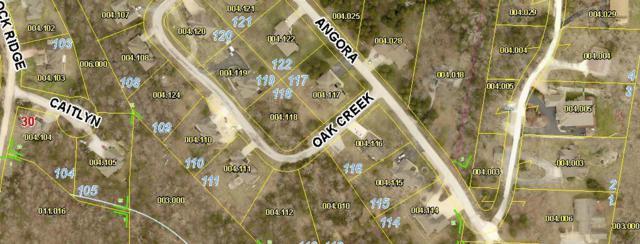 Lot 118 Oak Creek Circle, Branson West, MO 65737 (MLS #60141918) :: Sue Carter Real Estate Group