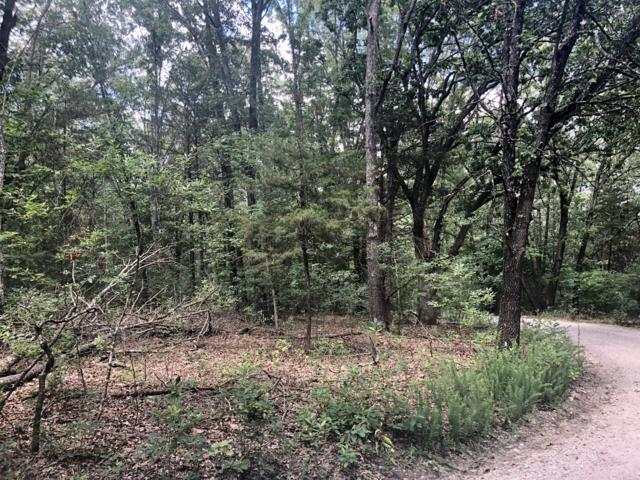 Lot 43.03 Hummingbird Lane, Golden, MO 65658 (MLS #60141974) :: Sue Carter Real Estate Group