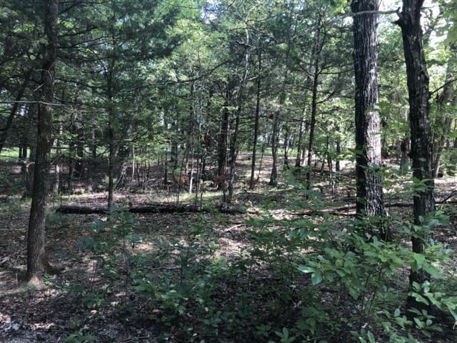 Lot 239 Thrush Lane, Golden, MO 65658 (MLS #60141976) :: Sue Carter Real Estate Group