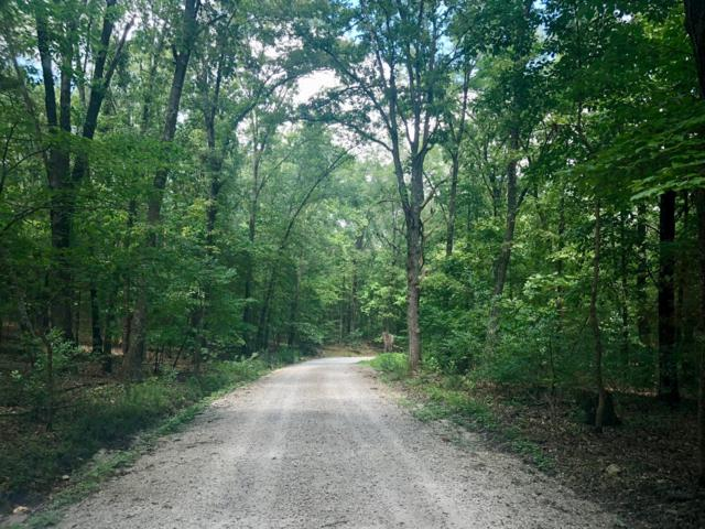 Lot 75 Meadowlark Lane, Golden, MO 65658 (MLS #60141977) :: Sue Carter Real Estate Group
