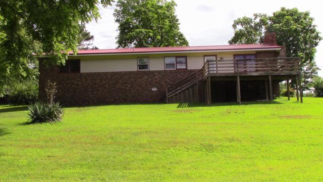 113 County Road 101, Gainesville, MO 65655 (MLS #60142001) :: Sue Carter Real Estate Group