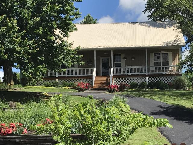 36205 State Hwy 413, Crane, MO 65633 (MLS #60142002) :: Sue Carter Real Estate Group