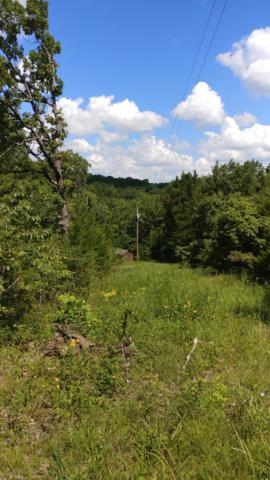 00000 Black Rock Trail, Wheatland, MO 65779 (MLS #60142023) :: Sue Carter Real Estate Group