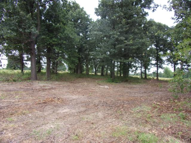 2220 Farm Road 2220, Monett, MO 65708 (MLS #60142081) :: Sue Carter Real Estate Group