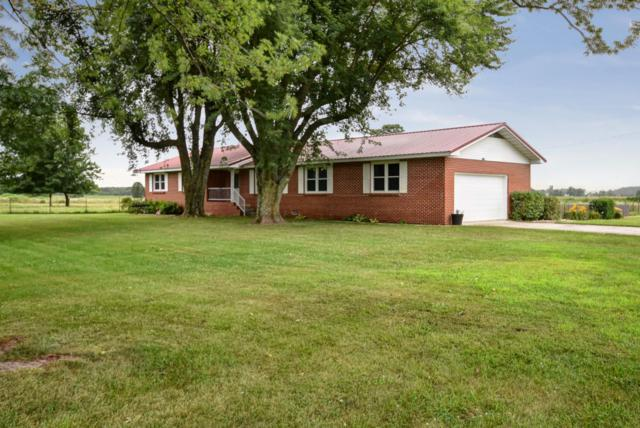308 Gypsy Flats Road, Fordland, MO 65652 (MLS #60142118) :: Sue Carter Real Estate Group