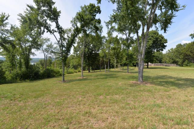 Lot 2 Merlot Road, Lampe, MO 65681 (MLS #60142134) :: Sue Carter Real Estate Group