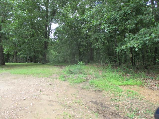 000 County Road  8320, West Plains, MO 65775 (MLS #60142173) :: Sue Carter Real Estate Group