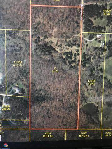 Vl Wildwood Ln, Buffalo, MO 65622 (MLS #60142203) :: Sue Carter Real Estate Group