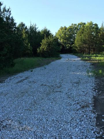 Tbd Big Tree Trail, Buffalo, MO 65622 (MLS #60142244) :: Weichert, REALTORS - Good Life