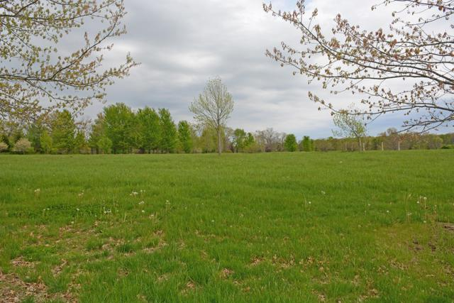 Lot 4 E Crown Park Lane, Springfield, MO 65809 (MLS #60142274) :: Team Real Estate - Springfield