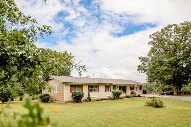11587 Co Rd 502, Ava, MO 65608 (MLS #60142302) :: Sue Carter Real Estate Group