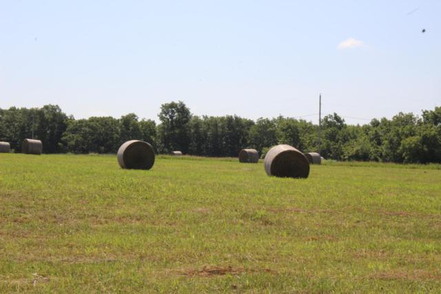 00000 County Road124l, Wheatland, MO 65779 (MLS #60142345) :: Sue Carter Real Estate Group