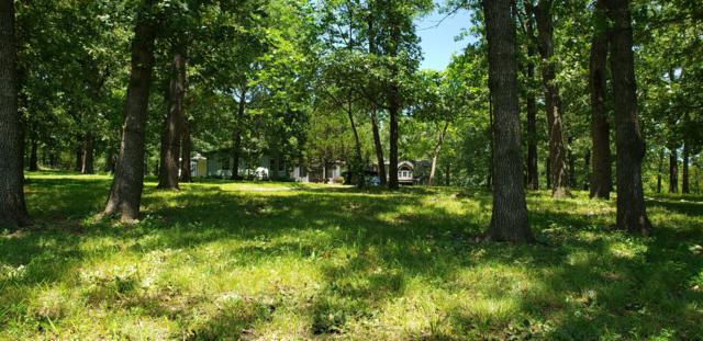 32785 Us-54, Preston, MO 65732 (MLS #60142377) :: Sue Carter Real Estate Group