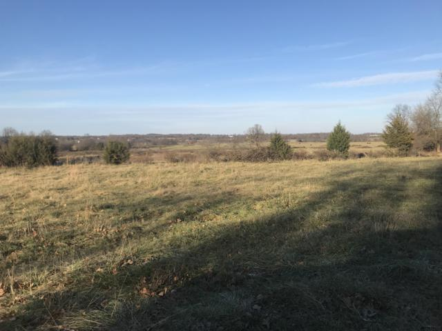 Tbd Hwy 60, Monett, MO 65708 (MLS #60142423) :: Sue Carter Real Estate Group