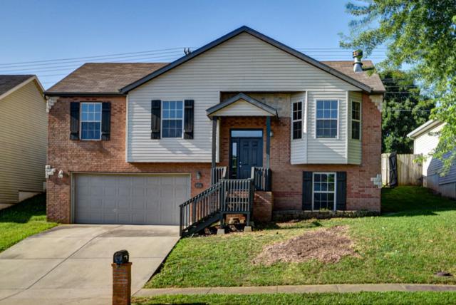 414 W Black Oak Road, Nixa, MO 65714 (MLS #60142444) :: Sue Carter Real Estate Group
