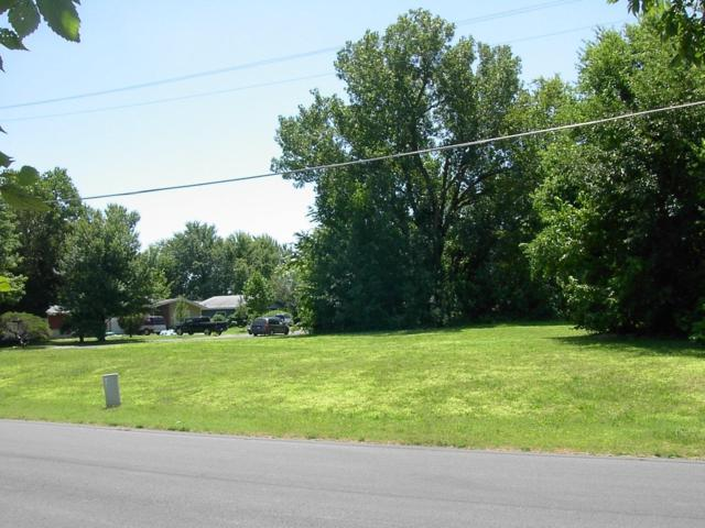 Tbd S Minnesota Avenue, Joplin, MO 64804 (MLS #60142522) :: Team Real Estate - Springfield