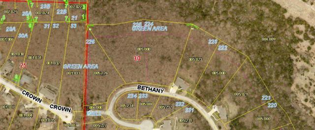 Lot 225 Bethany Lane, Branson West, MO 65737 (MLS #60142554) :: Weichert, REALTORS - Good Life