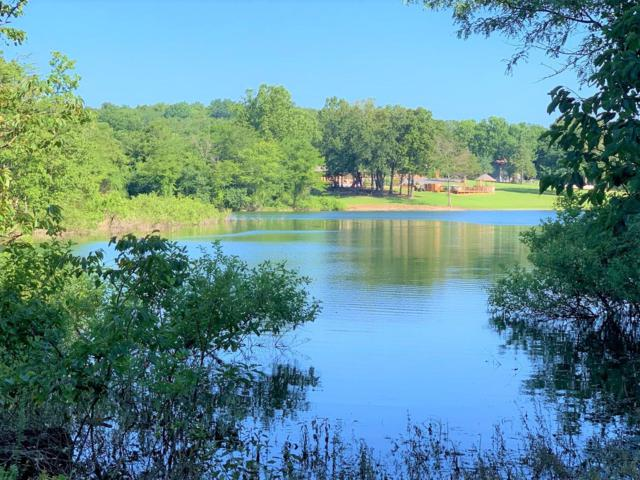 297 Trellis Drive, Lampe, MO 65681 (MLS #60142567) :: Sue Carter Real Estate Group