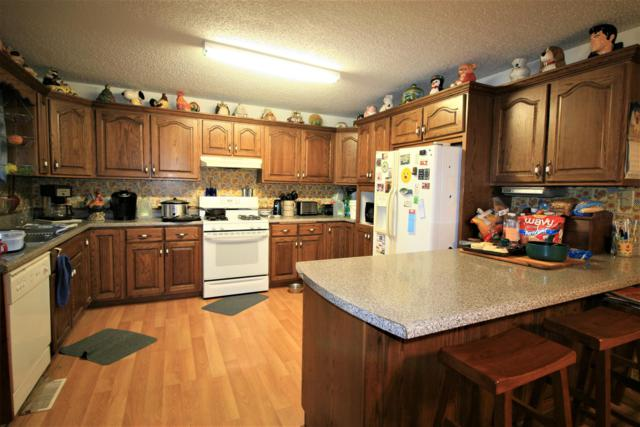 12031 State Route E, West Plains, MO 65775 (MLS #60142671) :: Weichert, REALTORS - Good Life