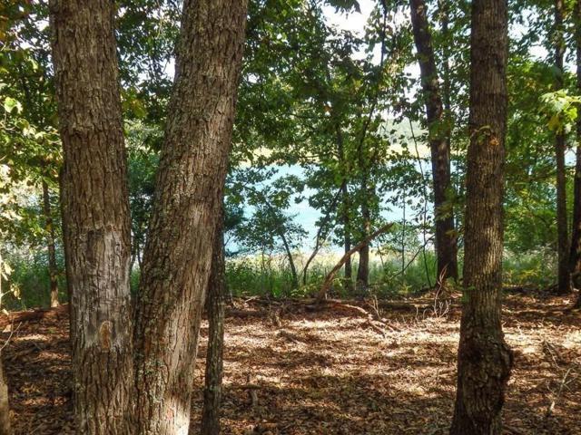 12/18 Lost Mine Road, Theodosia, MO 65761 (MLS #60142717) :: Sue Carter Real Estate Group