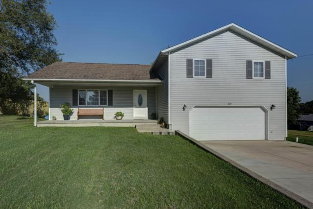 809 S Fleetwood Street, Ava, MO 65608 (MLS #60142796) :: Team Real Estate - Springfield
