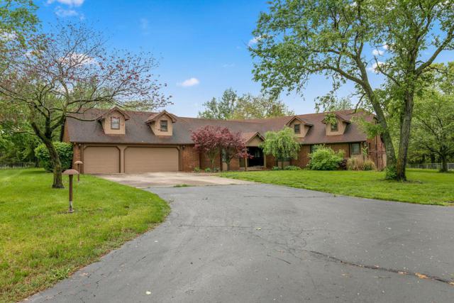 4530 E Melanie Lane, Rogersville, MO 65742 (MLS #60142814) :: Team Real Estate - Springfield