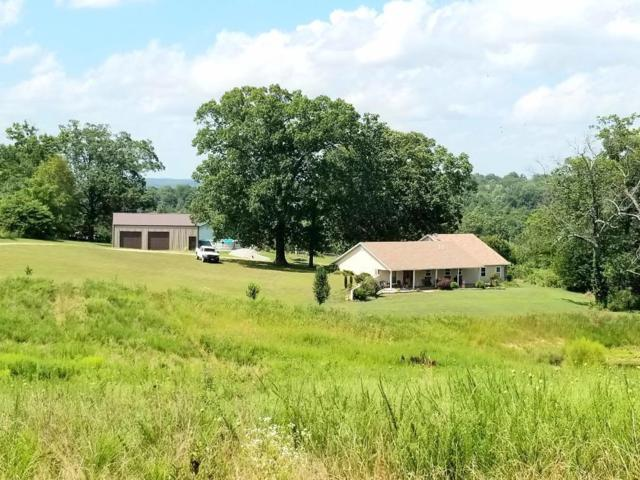 7040 W76 Co Rd 522A/ Rt 7 Box 7465, Ava, MO 65608 (MLS #60142829) :: Sue Carter Real Estate Group