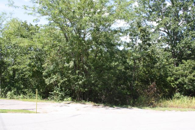 Tbd Shore Point Drive, Blue Eye, MO 65611 (MLS #60142861) :: United Country Real Estate