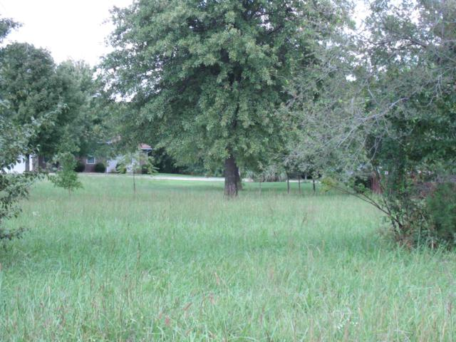 1,2,3,4,5 Plainvue Avenue, Marshfield, MO 65706 (MLS #60142961) :: Massengale Group