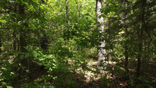 47-48 Lt Arrowhead Circle, Shell Knob, MO 65747 (MLS #60143151) :: Sue Carter Real Estate Group