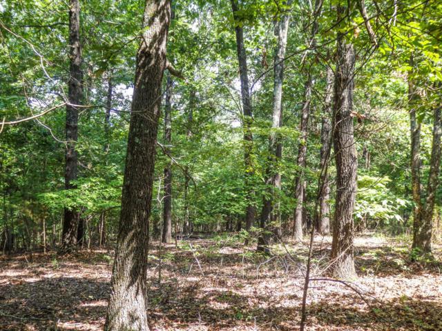 10/11 Lost Mine Road, Theodosia, MO 65761 (MLS #60143242) :: Massengale Group