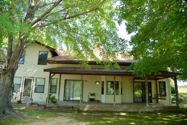 417 Church Camp Road, Taneyville, MO 65759 (MLS #60143269) :: Massengale Group