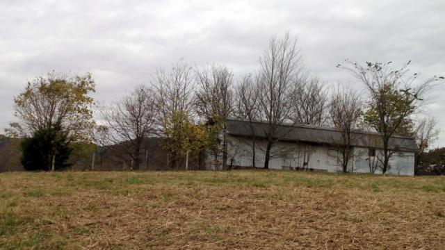 Lot # 42 Riverside Drive, Galena, MO 65656 (MLS #60143305) :: Team Real Estate - Springfield