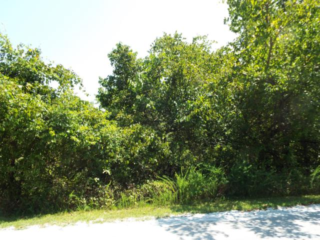Lot 108 Hallie Drive, Blue Eye, MO 65611 (MLS #60143365) :: The Real Estate Riders