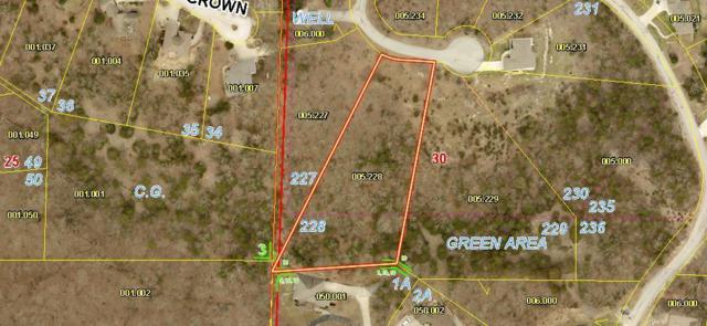 Lot 228 Bethany Lane, Branson West, MO 65737 (MLS #60143424) :: The Real Estate Riders