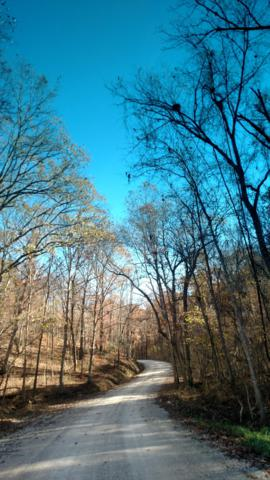 12 Acres Greatview Road, Highlandville, MO 65669 (MLS #60143447) :: Sue Carter Real Estate Group