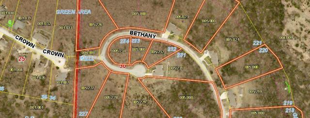 Lot 234 Bethany, Branson West, MO 65737 (MLS #60143514) :: Massengale Group