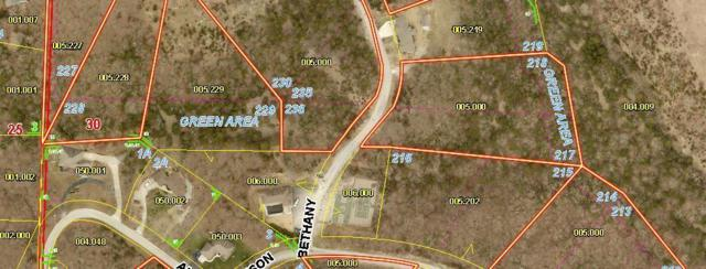 Lot 235 Bethany, Branson West, MO 65737 (MLS #60143515) :: Massengale Group