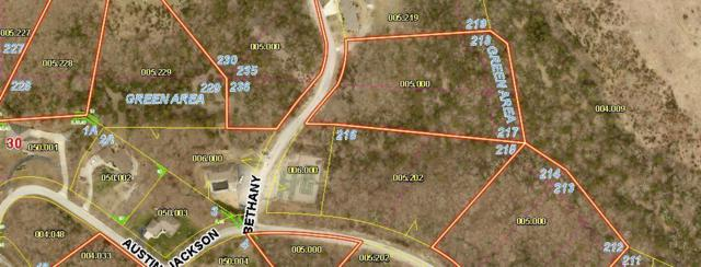Lot 236 Bethany, Branson West, MO 65737 (MLS #60143516) :: Massengale Group